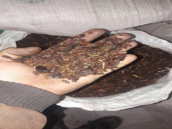 پخش ضایعات کشمش قابل عرضه کارخانه