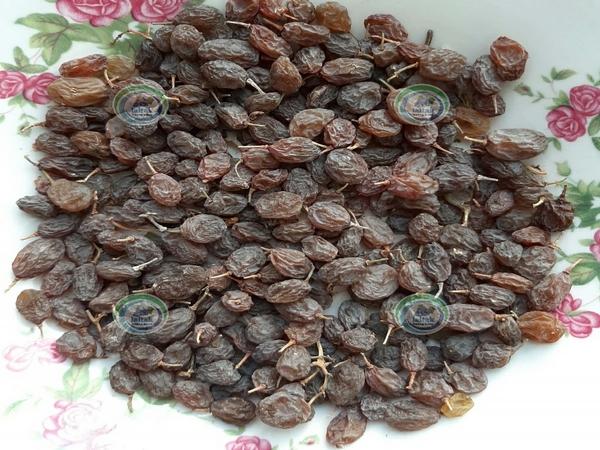 فروش کشمش آفتابی صادراتی ارگانیک تاکستان