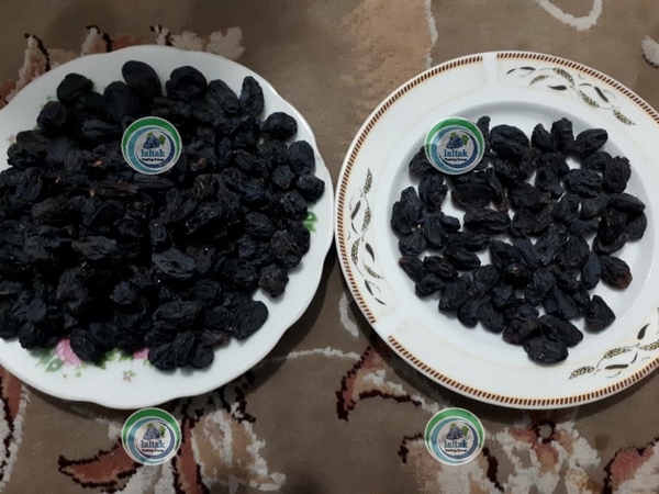 مویز سیاه شیراز