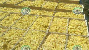 فروش کشمش زرد