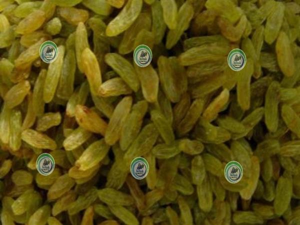فروشنده کشمش سبز